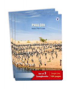 TARGET PUBLICATIONS Long Notebooks | Phalodi | 164 Pages Single Line | Set of 3