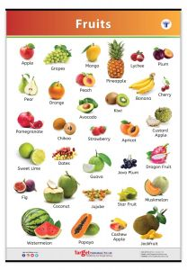 Fruit Chart for Kids | Jumbo Size with Fruit Names in English