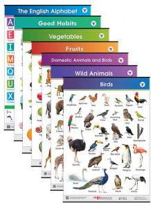Educational Charts for Kids | Jumbo Size with Colourful Images in English